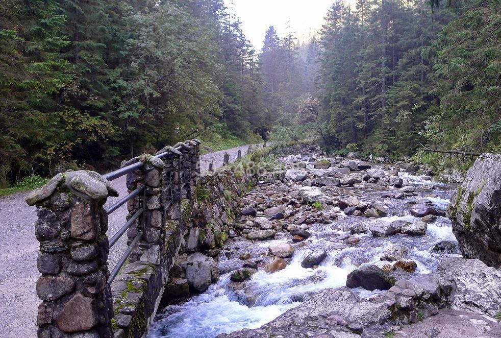 dolina kościeliska – lato